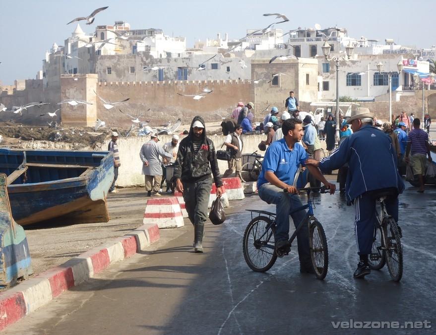 maroko3_25