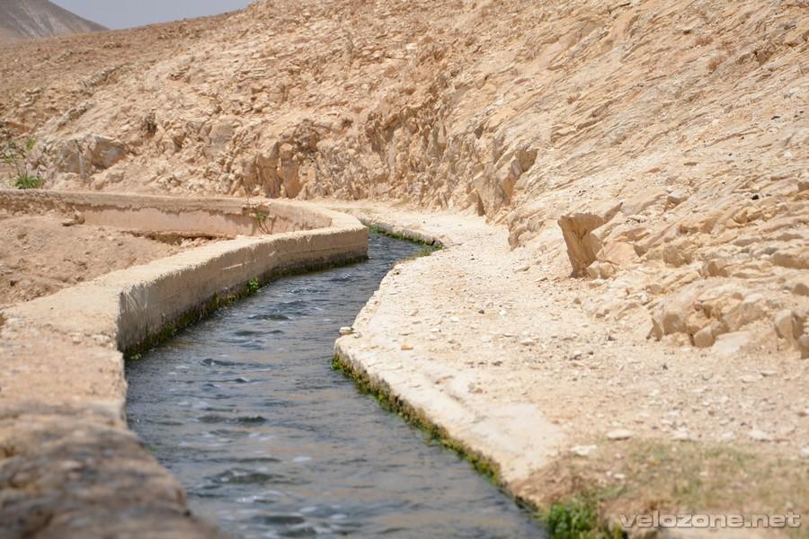 wadi001